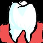 Przepiękne nienaganne zęby także doskonały prześliczny uśmiech to powód do dumy.